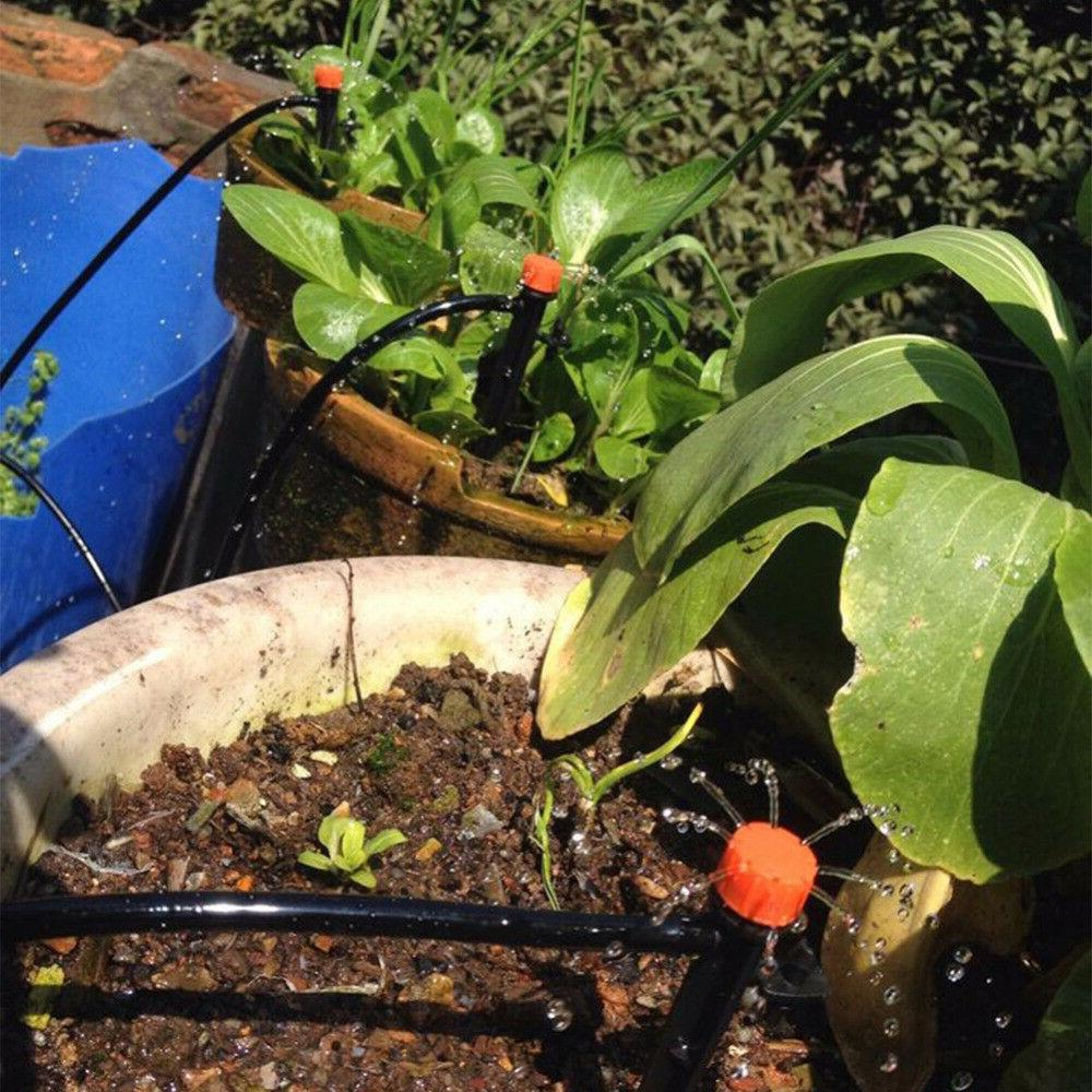 Plant Self