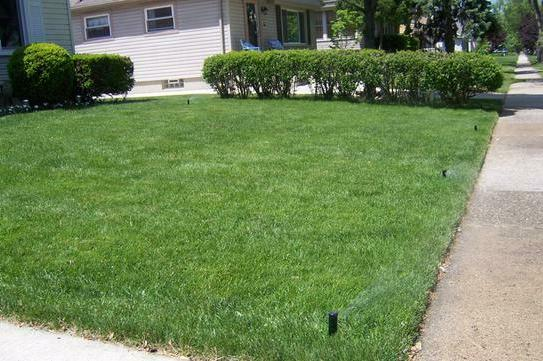 In-Ground It Yourself Lawn w/ 6